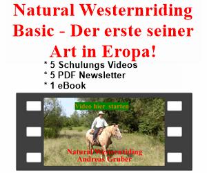 Online Kurs NW Basic